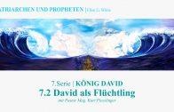 """7.2.David als Flüchtling – """"KÖNIG DAVID"""" von PATRIARCHEN UND PROPHETEN   Pastor Mag. Kurt Piesslinger"""