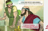 GESCHICHTEN DER BIBEL : 20.5 Wunder über Wunder – 20.ELISA | Pastor Mag. Kurt Piesslinger