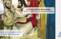 GESCHICHTEN DER BIBEL: 1.18 Der Blindgeborene – 1.DAS LEBEN JESU | Pastor Mag. Kurt Piesslinger